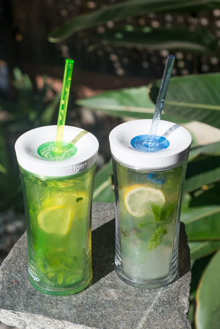 Summer-Cocktails-Minted-Vodka-Lemonade-To-Go-ryanbenoitphoto-thehorticult-RMB_7238
