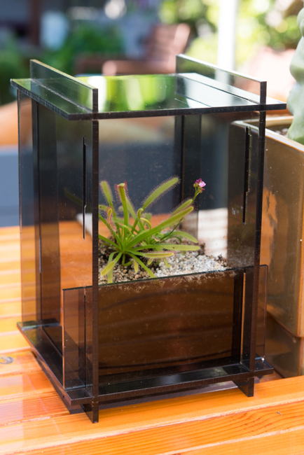 Acrylic Carnivore Habitat by Ryan Benoit Design