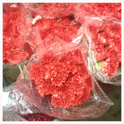 Is it just us, or has the carnation become more ruffly and irresistible since the days of elementary school valentines? These coral beauties we spotted at Wholesale Flowers in San Diego.