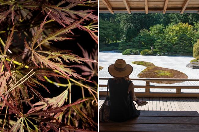 Japanese Garden in Portland Oregon.