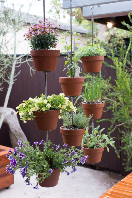 turn your clay pots into a vertical garden our 39 dark rye. Black Bedroom Furniture Sets. Home Design Ideas