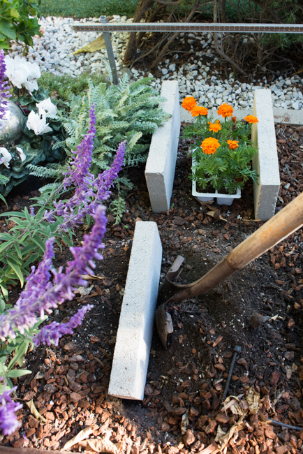 Making raised beds with concrete blocks.