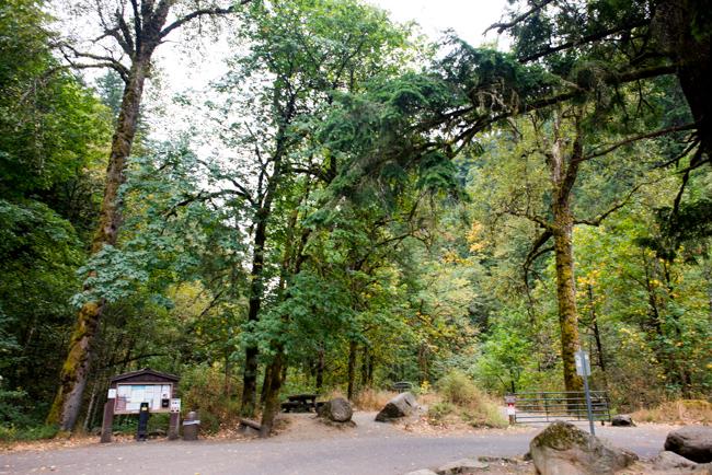 Trailhead for Wahclella Falls.