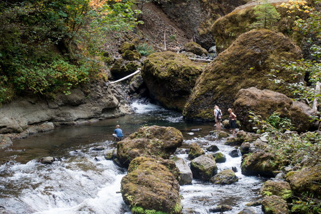 Wahclella-Falls-Portland-Fall-2014-The-Horticult-ryanbenoitphoto-thehorticult-RMB_0530