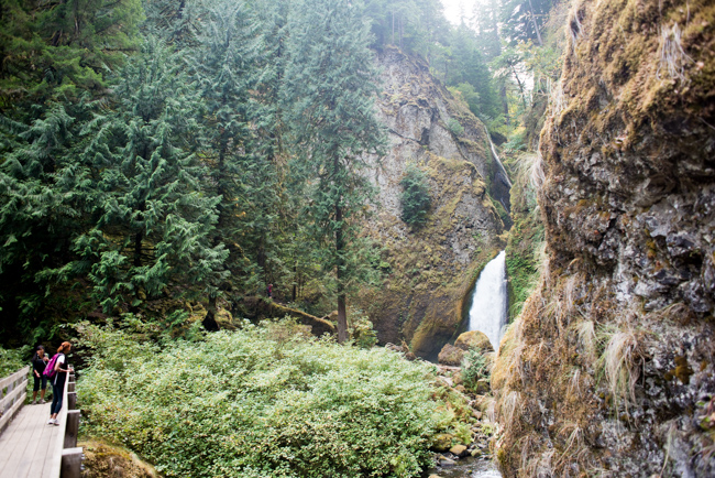 Wahclella-Falls-Portland-Fall-2014-The-Horticult-ryanbenoitphoto-thehorticult-RMB_0647