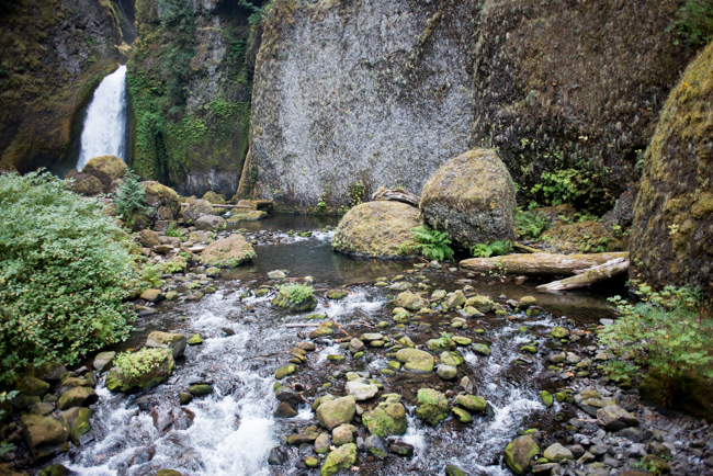 Wahclella-Falls-Portland-Fall-2014-The-Horticult-ryanbenoitphoto-thehorticult-RMB_0649