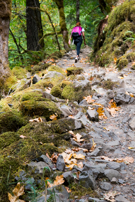 Wahclella-Falls-Portland-Fall-2014-The-Horticult-ryanbenoitphoto-thehorticult-RMB_0715