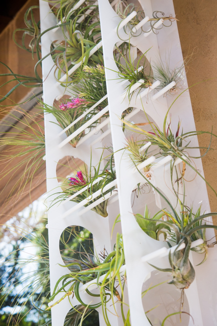 Acrylic Tillandsia Tower - Ryan Benoit Design