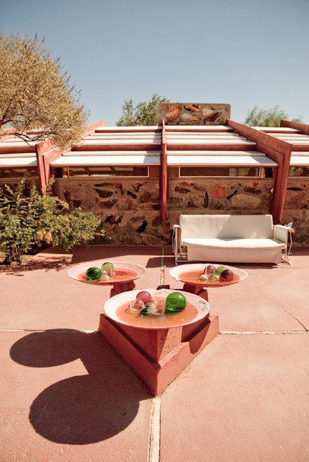 Taliesin West featured on The Horticult.