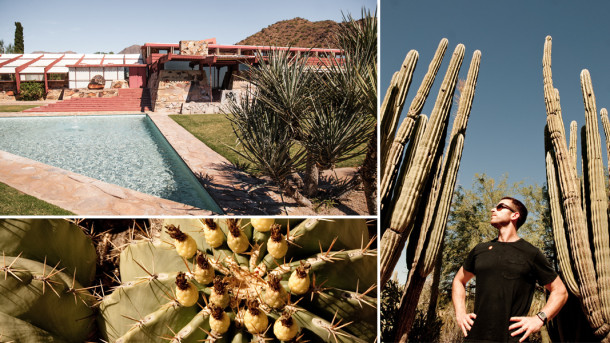 Desert Botanical Garden and Taliesin West
