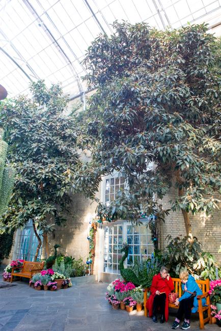 US Botanic Garden - Garden Court
