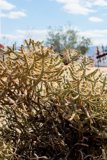 Noah Purifoy Outdoor Museum of Assemblage Sculpture in Joshua Tree - Featured on The Horticult - Photo by Ryan Benoit