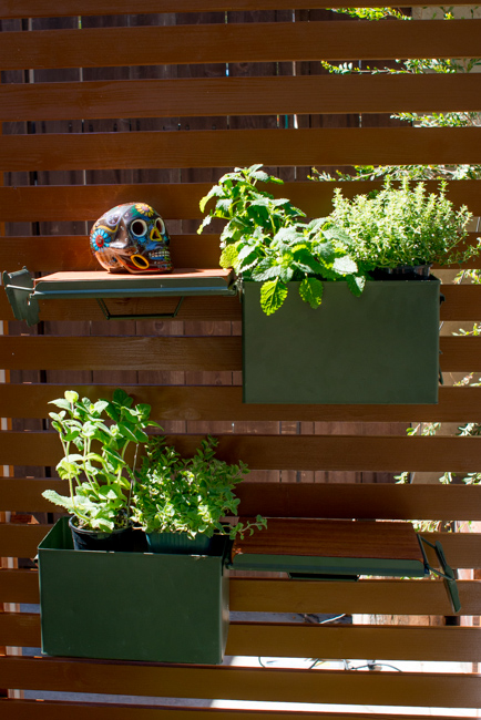 Ammo Can Planters - The Horticult