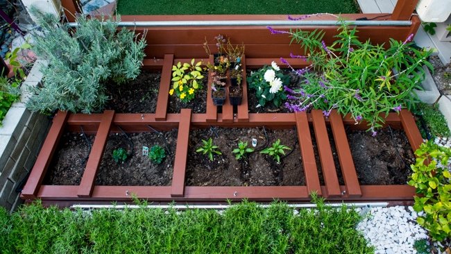 Raised Garden Beds - The Horticult - Ryan Benoit Design
