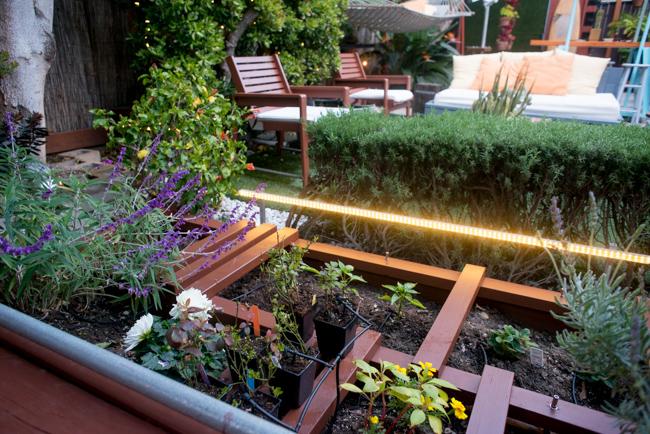 Raised Garden Beds - The Horticult - Ryan Benoit Design