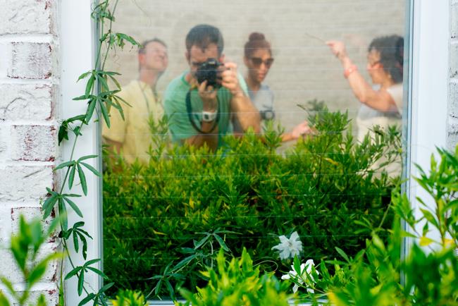 Mom's Garden - The Horticult