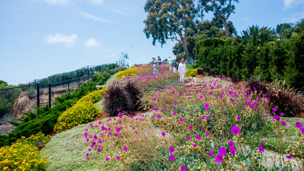 Secret Garden Tour of La Jolla, May 2015 - Garden Number 1 - The Horticult Photo Tour