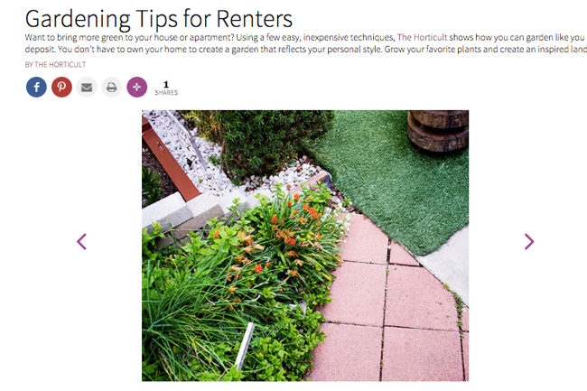 Check out our 39 gardening tips for renters 39 guide on better homes gardens the horticult Better homes and gardens planting guide