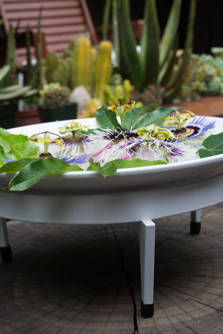 Passion flowers floating in Mezzo Mod Dish by Steel Life