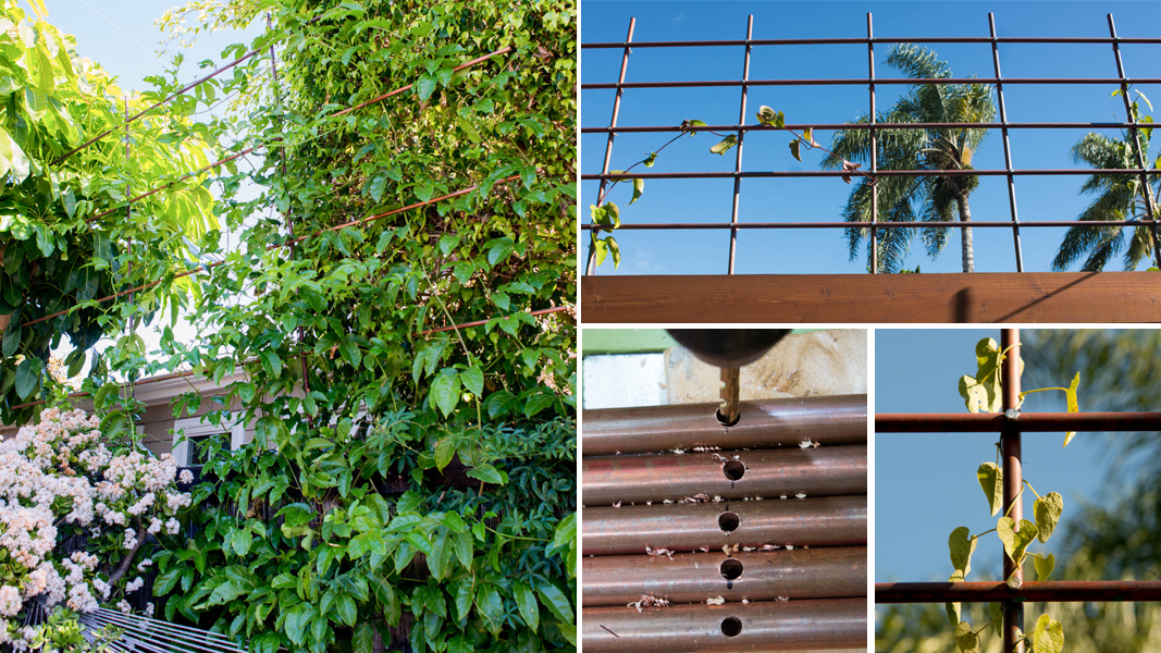 going super vertical how to build a copper pipe trellis without