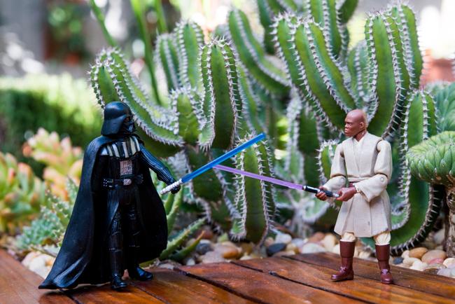 Star Wars: The Garden Awakens