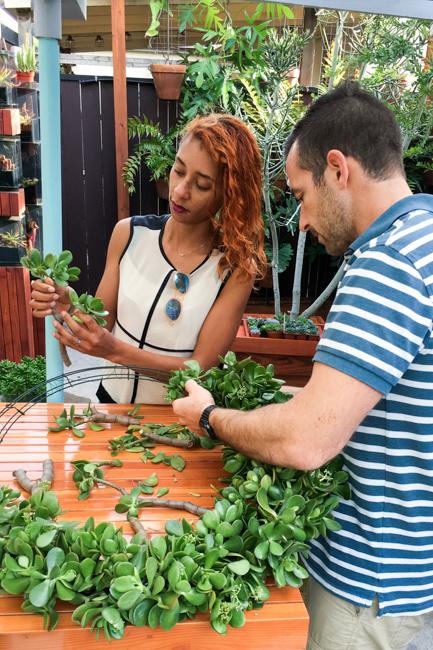 Jade wreath DIY