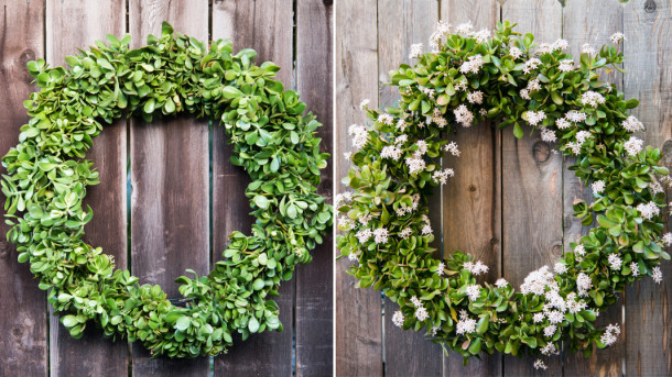 Jade wreath DIY