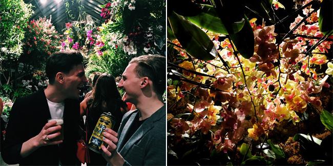 New York Botanical Garden Orchid Show