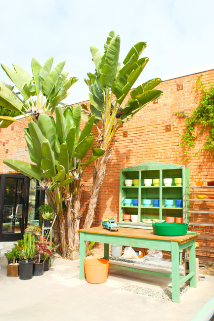 Potted Store - Santa Monica