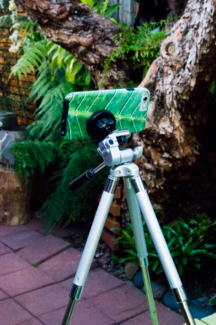 DIY mini garden tripod