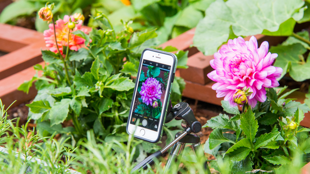 DIY Garden Camera: How To Make A Magnetic Tripod For Your Phone