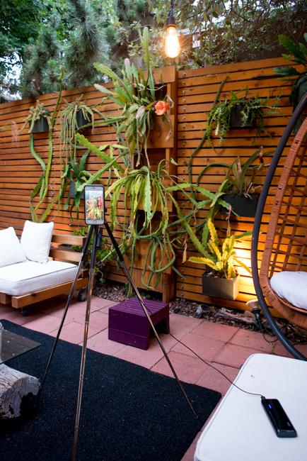 DIY mini garden tripod